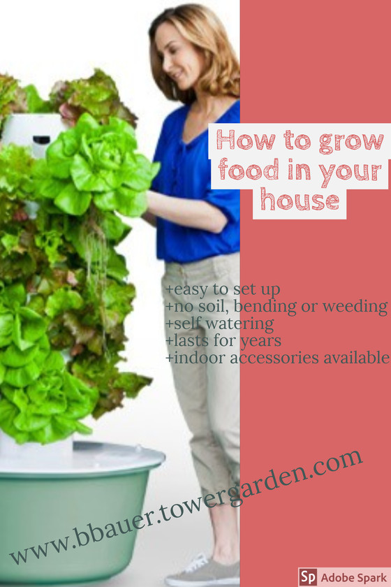 How to garden year round