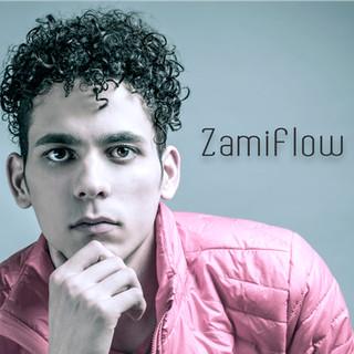 ZamiFlow