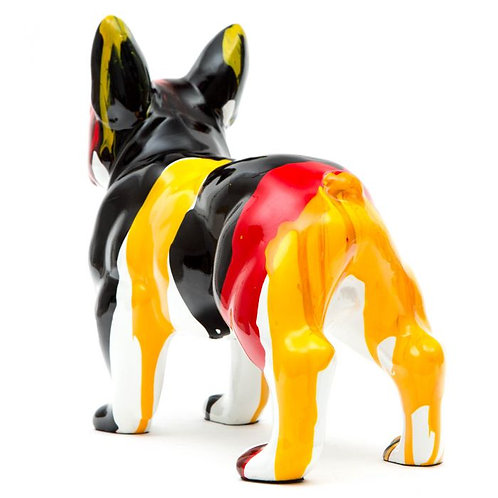 Boston Terrier multicolor