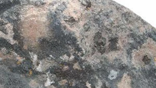 Moss Rock - Cascade