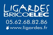 BricoElecLogo_HautCouleur_15_10 (2).jpg