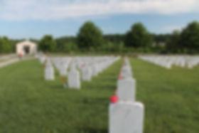Memorial Day 2020 Roses Grave.jpg