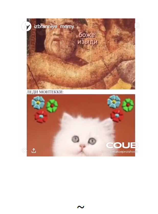 Избранные мемы из переписки