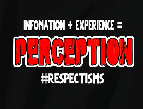 Information+Experence= Perception HOODIE