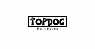 logo_transparent_background.png.webp