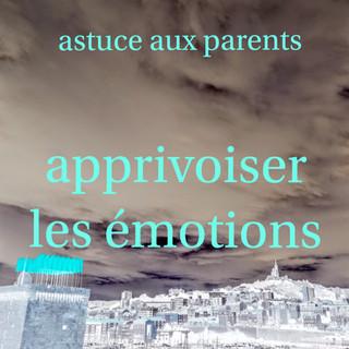 11-les émotions-.jpg