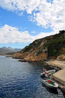 Fieldwork in Corsica, France