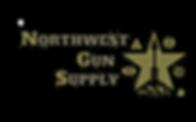 NGS Logo2