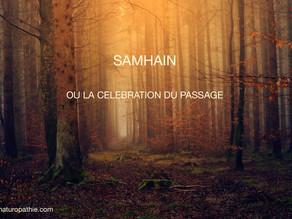 """Samhain ou la métaphore du """"passage"""""""