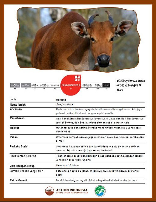 Banteng Fact Sheet