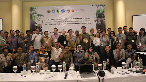 photo of 2017 workshop in Indonesia