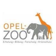 opel zoo.jpg