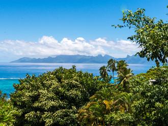 Südpazifik - Part 2: franz. Polynesien / Tahiti und Moorea