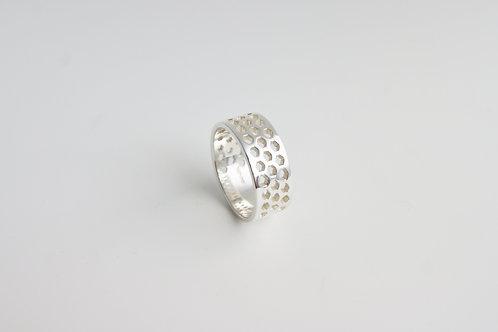 Diatom Ring