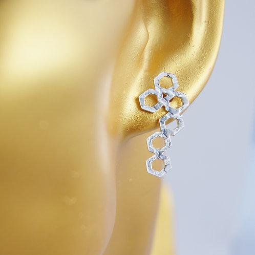Diatom Long Cluster Post Earrings