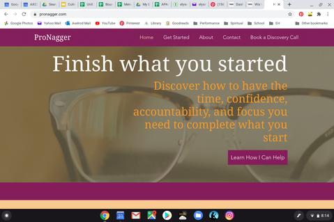 ProNagger Website