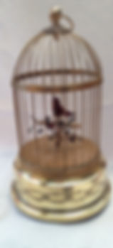 2 cage - after 1.JPG