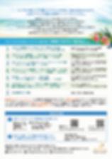 Flyer2_Hawaii.jpg