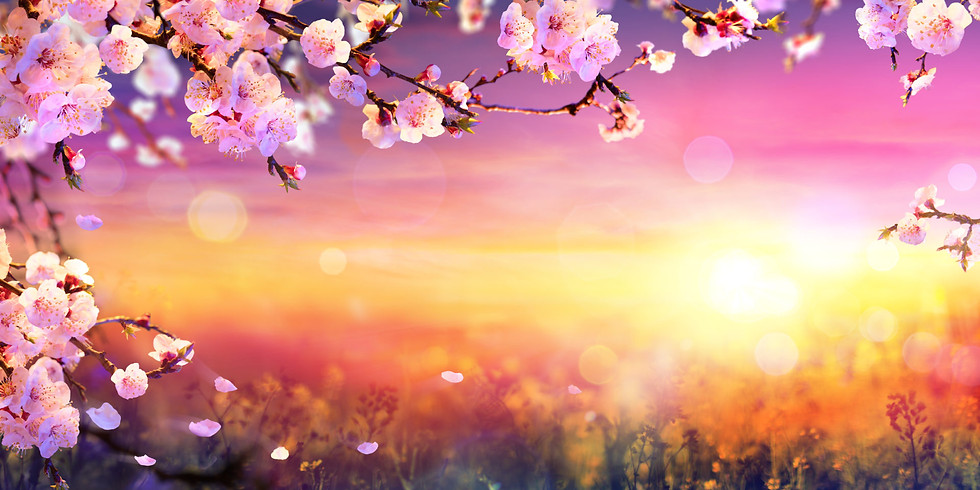 Spring into Spring – a seasonal celebration…..food, light & sex!