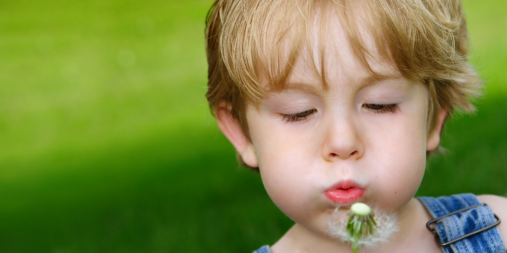 Boy blowing on dandelion making a wish