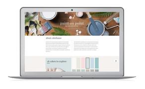 Hayneedle Website: Paint