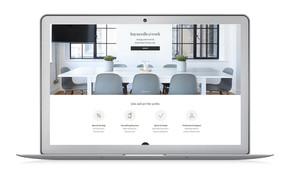 Hayneedle Website: Business