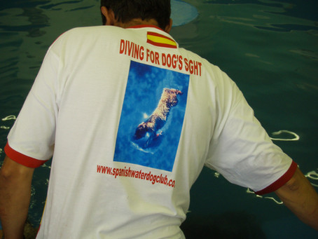 Weekend Water Training Success Helps Raise Funds For Glaucoma Research