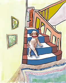 dog on steps.jpg