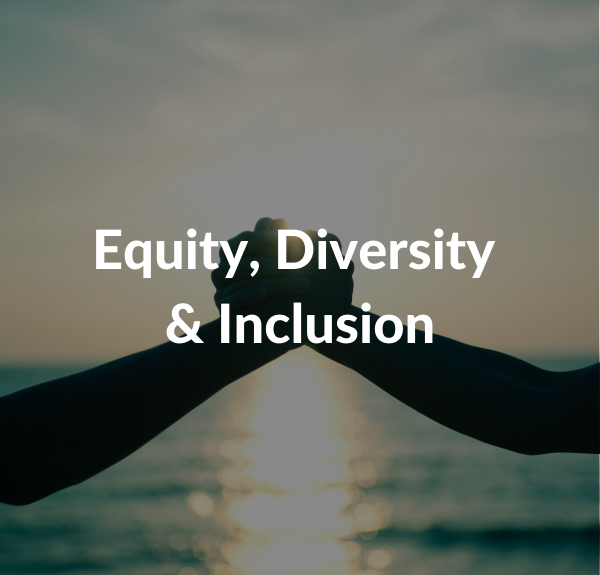 Equity Diversity Inclusion
