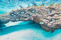 Underwater World 1 ( Part 1 of Diptych)
