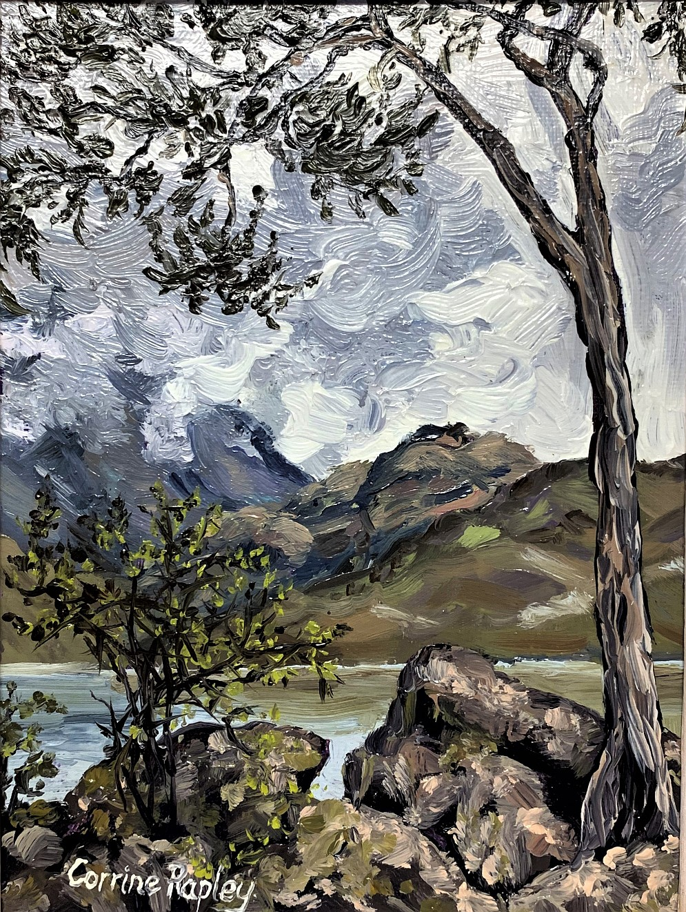 SOLD - View from Glendhu Bay, NZ