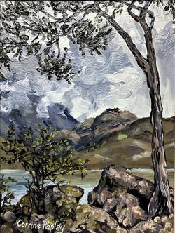 View from Glendhu Bay, NZ