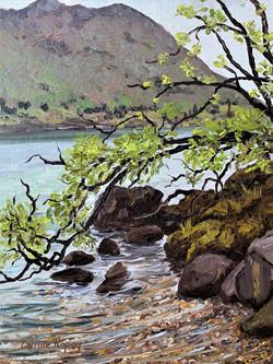 Eely Point, Lake Wanaka, NZ