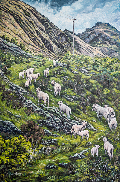 SOLD - Sheep Climb near Lake Hawea, NZ