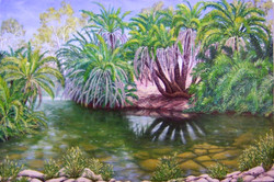 Oasis in the Pilbara, Palm Springs