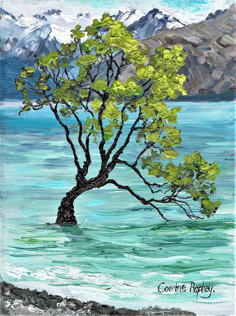 SOLD - That Wanaka Tree, NZ