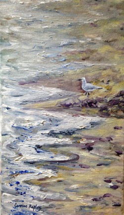 SOLD - Seagull at Dolphin Quay