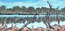 Barragup Swamp