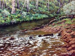 Murray River Rapids