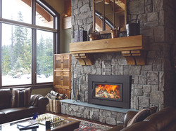 Fireplaces and Inserts