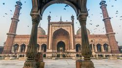 nws-india-delhi