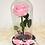 Thumbnail: Rosa preservada