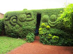 Le jardin Chez Tess