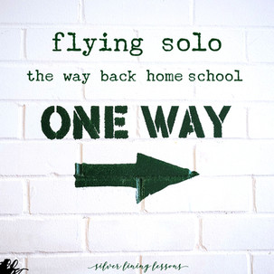 Flying Solo - The Way Back Home[school]