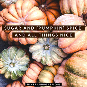 Sugar and [pumpkin] Spice and All Things Nice