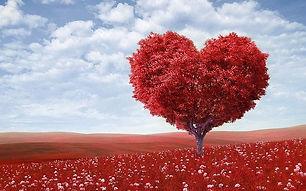 HeartCentre.jpg
