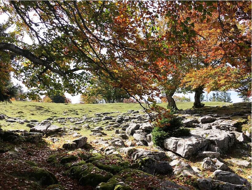 rocky landscape.jpg