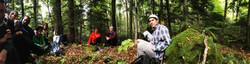forestshare.jpg