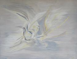 Ebats d'ailes