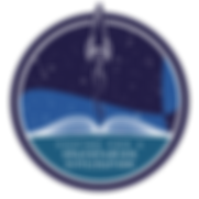 Centre for a Spacefaring Civilization pn